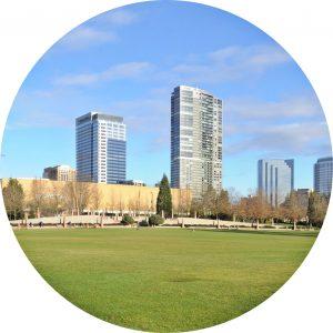 Bellevue Home Search